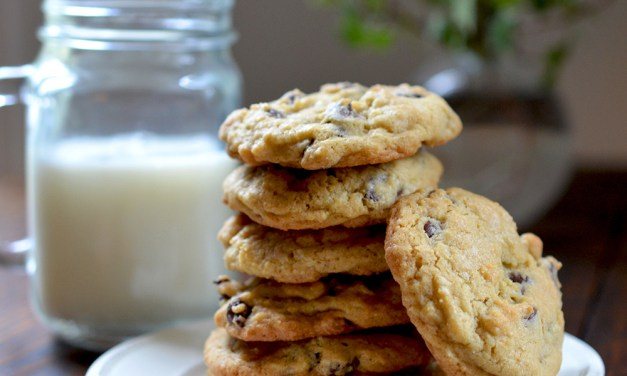 Sixteen Boo-Boos and a Chocolate Chip Cookie