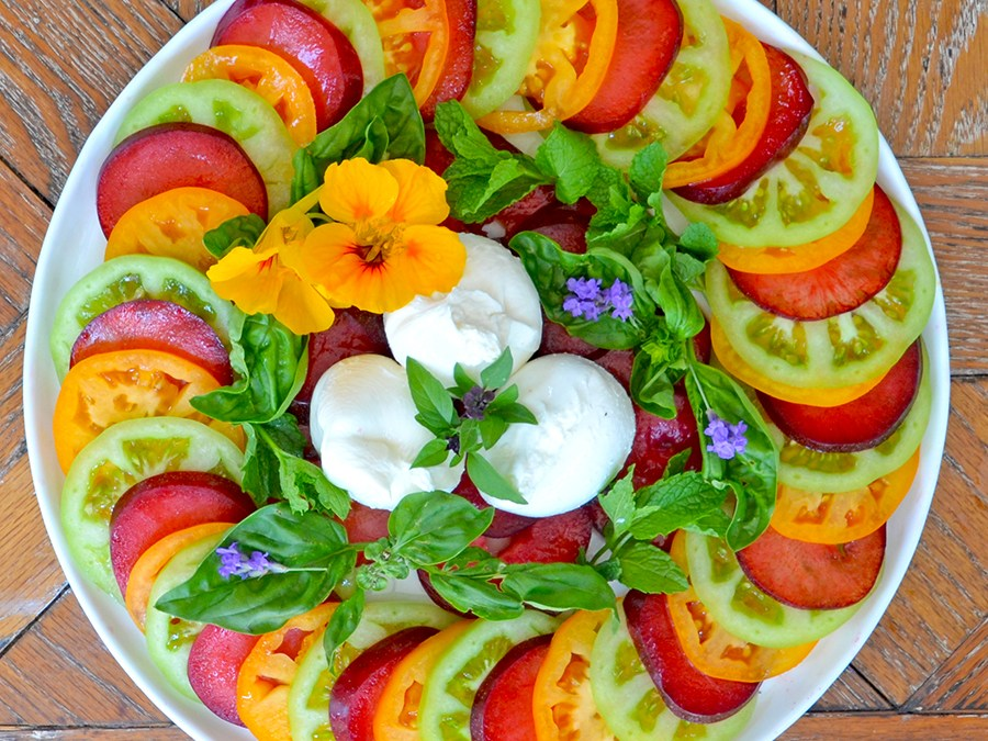 Heirloom Tomato & Plum Salad with Basil-Mint Pesto and Burrata {vegetarian, gluten-free}