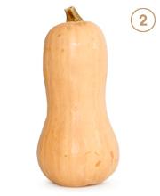 Butternut Squash Image