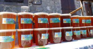 EPL de Haute-Corrèze production miel ferme du Manus