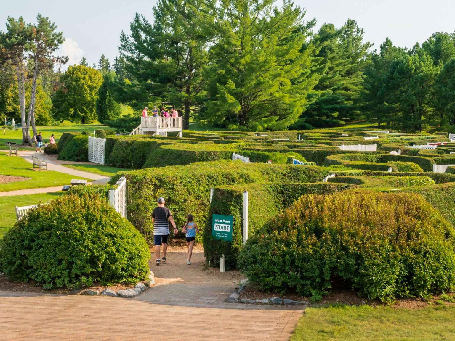 A father and his daughter walk into the Arboretum maze garden.