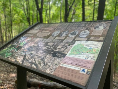 This sign is surrounded by the woods along the Elizabeth Fries Ellet trail.