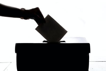 voter graphic