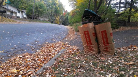 Bags filled with leaves stand tall next to a pile or more leaves.