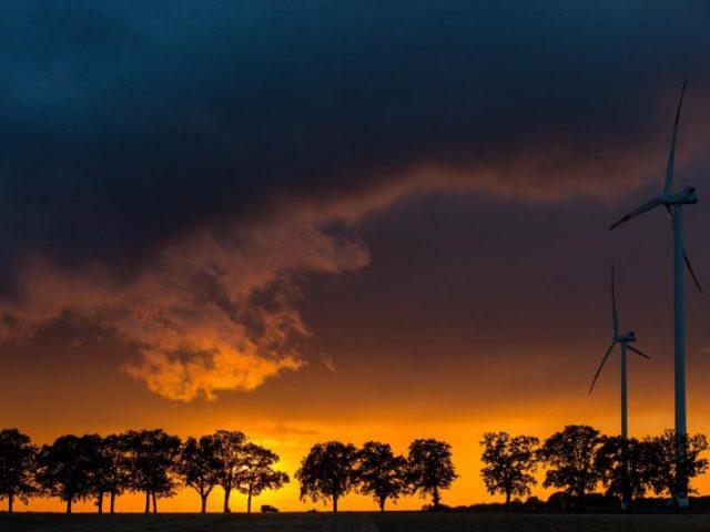 Abendstimmung: Farbenprächtig leuchtet der Sonnenuntergang hinter einer Allee bei Petersdorf in Brandenburg. Foto: Patrick Pleul/dpa