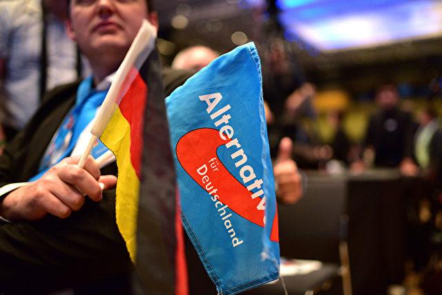 AfD und Deutschland Fahne Foto: Thomas Lohnes/Getty Images