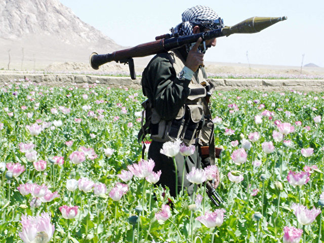 Kandahar, AFGHANISTAN: (FILES) In this photograph dated 15 April 2005, an Afghan soldier with a rocket is pictured in a drive by officials to destroy poppies in a field in the Maiwand district, 45 kms west of the southern city of Kandahar. Taliban rebels determined to keep southern Afghanistan in chaos 13 March 2006 have teamed up with drug barons against the government and its opium eradication campaign launched last week, officials say. AFP PHOTO/ Emmanuel DUPARCQ (Photo credit should read Emmanuel Duparcq/AFP/Getty Images)