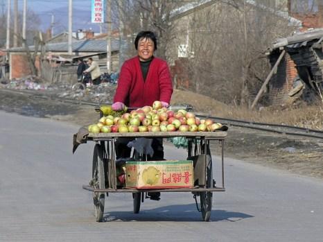 Продаёт яблоки на передвижном торговом лотке. Уезд Хуанань провинции Хэйлунцзян. Фото: Da Changjin