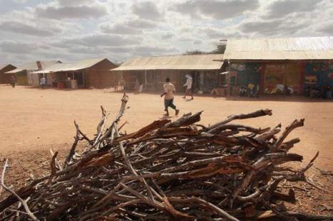 Дадаабе, Кения. Беженцы нуждаются в срочной помощи. Фото: Spencer Platt/Getty Images