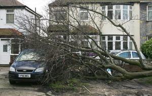 Удар стихии в виде мощнейшего урагана пришелся на Старый свет. Скорость ветра местами достигала двухсот километров в час. Фото: PAUL ELLIS/AFP/Getty Images