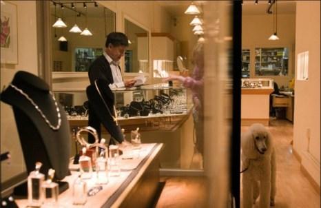 Стильный пудель, кажется, отлично вписывается в роскошный ювелирный магазин Партишиа на Каштановой улице в Кау Холлоу. (Catherine Karnow)