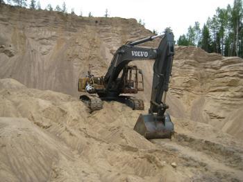Мертвый лес. Фото предоставлено пресс-службой Общероссийской общественной организации
