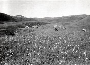 Кочевье Хасан-бека в Алайской долине. Фото: risk.ru