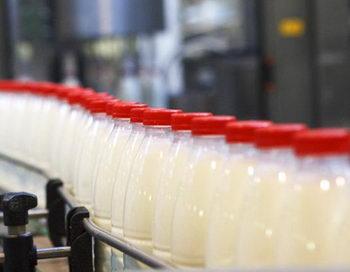 Власти обещают обеспечить Горный Алтай местным молоком. Фото с сайта img.tumix.ru