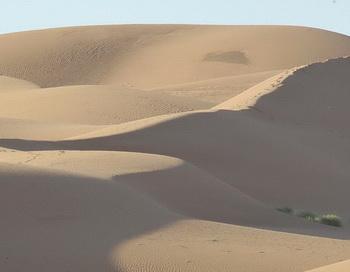 Пустыня Sahara. Фото: PIERRE VERDY/AFP/Getty Images