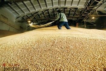 Многие государственные зернохранилища в Китае могут оказаться пустыми. Фото с epochtimes.com
