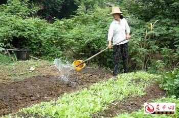 На жён китайских крестьян ложится непосильное бремя ведения всего хозяйства в виду того их мужья постоянно вынуждены ездить на заработки. Фото с epochtimes.com