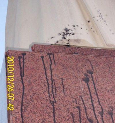 Памятник Мао Цзэдуну облили краской. Провинция Хэбэй. Фото: boxun.com
