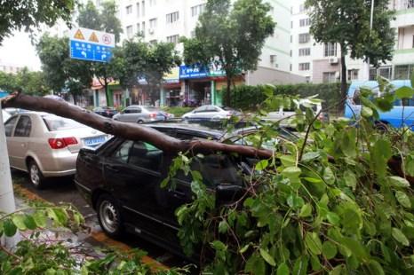 Тайфун  «Фанаби» бушует в Китае. Фоторепортаж