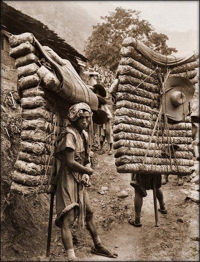 Носильщики несут чайные листья. Провинция Сычуань. 1908 год. Фото с kanzhongguo.com