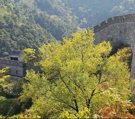 Мутяньюй из раздела «Великая китайская Стена». Фото: Yan Kaiming