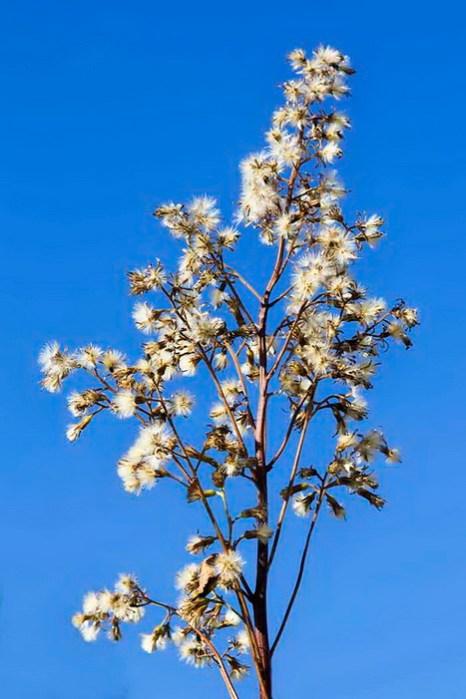 Осенний Байкал. Фото: Нина Апёнова/Великая Эпоха (The Epoch Times)