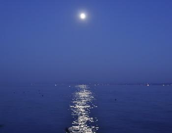 Южная ночь. Фото: Николай Богатырев