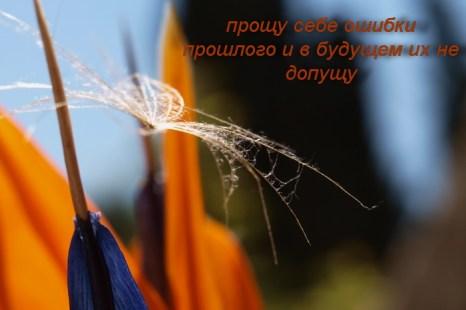 Обещаю себе… Фото: Хава Тор/Великая Эпоха (The Epoch Times)