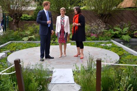 Принц Гарри и графиня Уэссекса Софи на юбилейной королевской выставке цветов в Челси. Фото: Geoff Pugh - WPA Pool/Getty Images