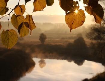 Осенний пейзаж. Фото: РИА Новости