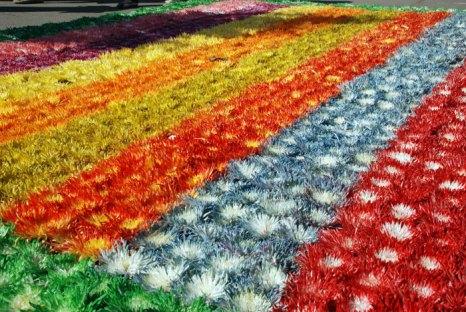 На Красной площади откроется фестиваль цветов. Фото: Юлия Цигун/Великая Эпоха (The Epoch Times)