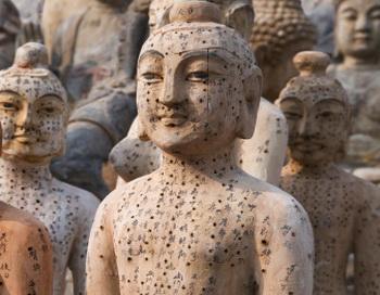 Фигуры  для обучения акупунктуре. Фото: China Span/Getty Images