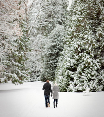 Если погода на улице более холодная, то пища должна быть более тёплая и калорийная. Фото: Noel Hendrickson/Digital Vision/Getty Images