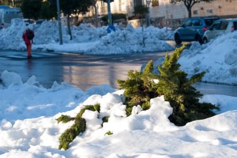 В Иерусалиме снег. Фото: Хава Тор/Великая Эпоха (The Epoch Times)