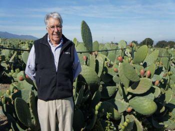 Энди дАрриго на своей кактусовой ферме в долине Кармель. Фото: Beverly Mann