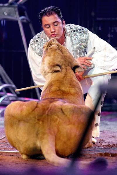 Британский дрессировщик львов и слонов Мартин Лейси-младший. Фото:  ERIC GAILLARD/AFP/Getty Images