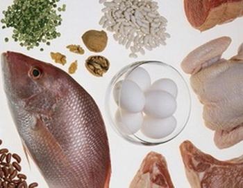 Учёные доказали вред белковых диет. Фото с сайта  cook.askwoman.ru