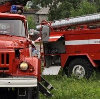 Пожарные лицензии МЧС Росси. Фото: иmnenieru.ru