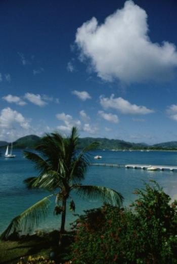Лагуна  Мартиники. Фото с сайта Photo.com
