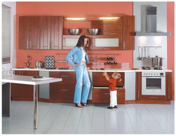 Мебель для кухни из различных материалов. Какая кухонная мебель лучше - дерево или пластик. Фото с ld-mebel.narod.ru