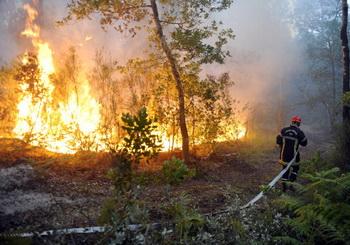 У семи нянек… лес горит и горит. Фото: JEAN-PIERRE MULLER/AFP/Getty Images