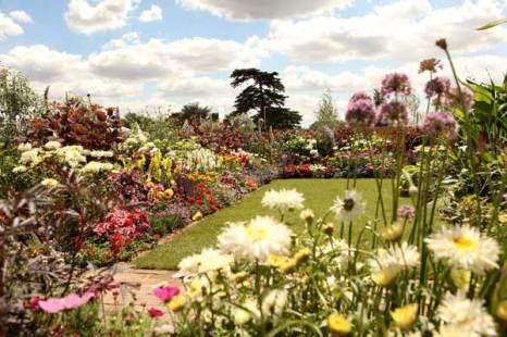 Ежегодная Хамптонская выставка цветов в Лондоне. Фото: Oli Scarff/Getty Images