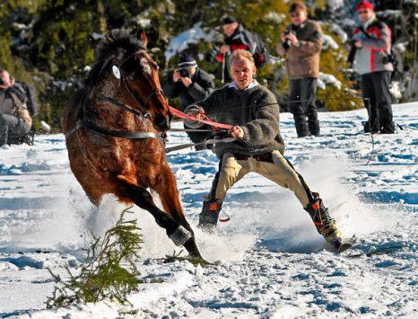 Зимой не до скуки. Лошадь тянет лыжника на традиционном соревновании горцев в Мале Цихе, Польша, 30 января. Фото: sportpicture.ru