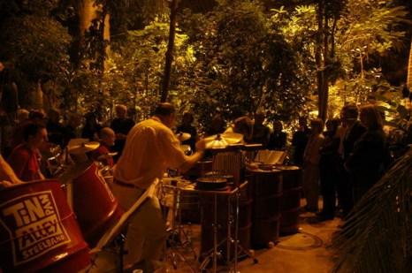 Тропическая ночь в Ботаническом саду: живая музыка в большой тропической оранжерее. Фото: © G. Hohlstein, Botanischer Garten und Botanisches Museum Berlin-Dahlem