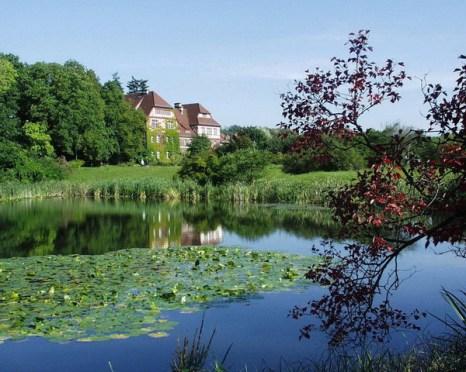 Американское озеро. Фото: © I. Haas, Botanischer Garten und Botanisches Museum Berlin-Dahlem