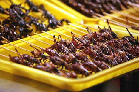 А вот в Китае повсеместно можно увидеть жареную саранчу, которую продают на деревянных палочках. Фото: bigpicture.ru
