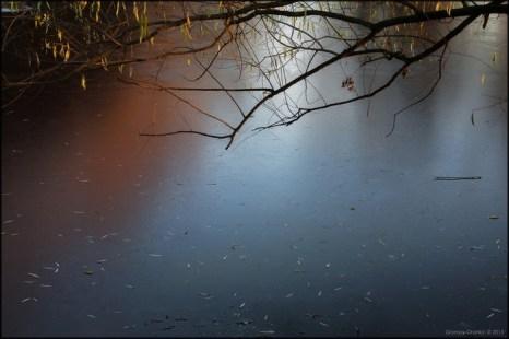 Леденеет... Фото: Игорь Громов-Дранкин