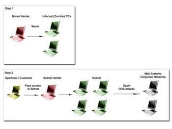 Схема работы ботнета. Иллюстрация с geekswithblogs.net