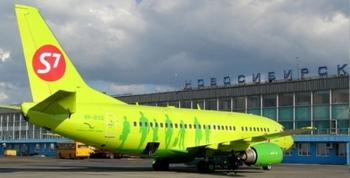 Самолет А-319, Омск-Москва, мог разбиться из-за птиц. Фото с сайта amurpolit.ru