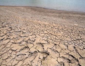 Екатеринбургу грозит «засуха». Фото: Orlando SIERRA/AFP/Getty Images